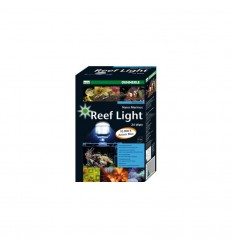 Dennerle reef light kit