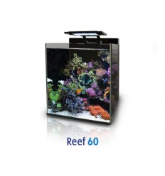 Blue Marine Reef 60 dekruit