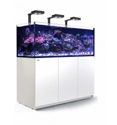 Red Sea reefer deluxe xxl 625