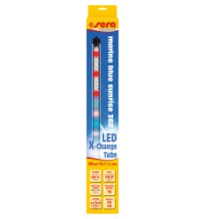 LED marin blue sunrise 360